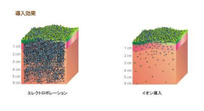 育毛に有効な成分をいかに頭皮に吸収させるか