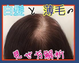 【女性 白髪】白髪と薄毛の見せ方解析‼️〜伸びかけ白髪にご注意を!〜