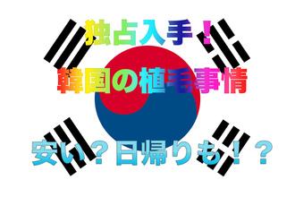 【韓国 植毛事情】韓国で植毛する場合の費用やツアー行程を大公開!