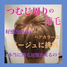 【薄毛 つむじ】頭皮のお悩みは明るい色で解消できる!!