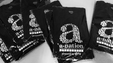 a-nation iland fes.